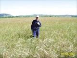 ..где то в поле.. перед поселком Нугуш...
