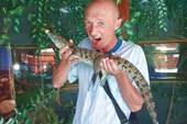 Крокодиловая ферма в Голубицкой