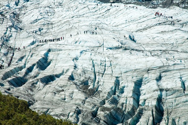 Ледник Фокс.