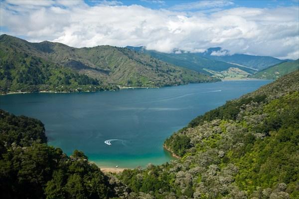 Вид на изрезанный островами залив Marlborough Sounds