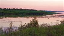 Заросшие протоки Ангары. Остров Сосновый