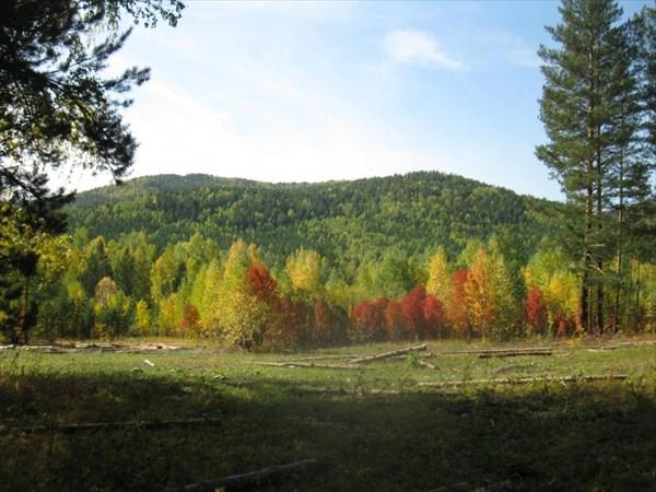 Осень в низовьях Ицыла...