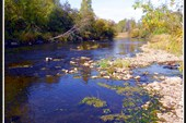 Река Большая Сатка в окрестнотсях п.Романовки