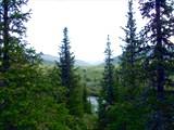 Вид на верховья Селэмью