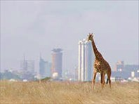 I-город Найроби