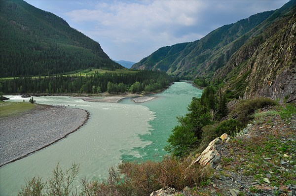 Слияние рек Аргут и Катунь