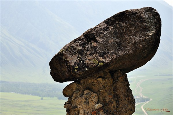 """""""Гном"""". Каменные грибы"""