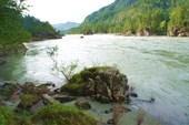 Река Катунь. это же место. вид с пляжа.