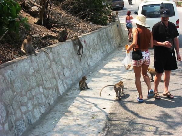 Khao Sam Muk - Гора обезьян, Паттайя