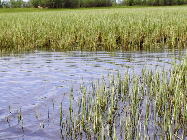 Рыбное озеро - Восьмерка