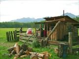 Пришли на летний лагерь где пасут местную скотинку