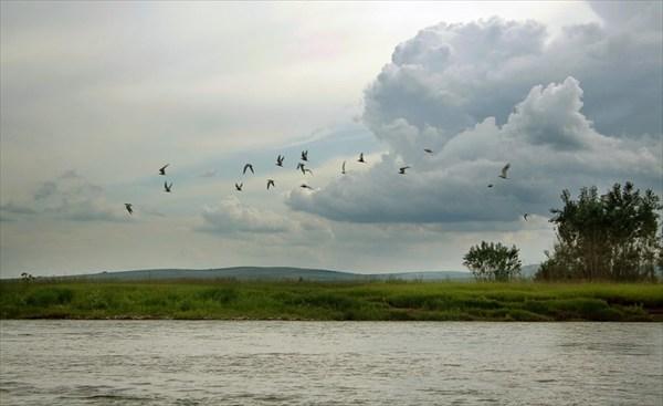 по Тубинскому заливу