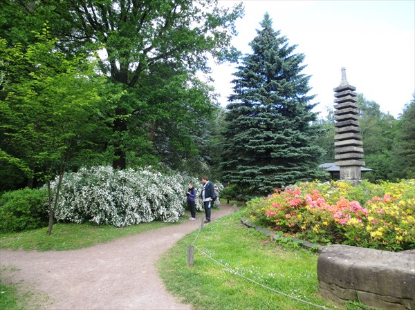 Главный ботанический сад им. Н.В. Цицина РАН, японский сад