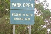 В Голубых горах расположено несколько национальных парков