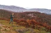На фоне заснеженных гор