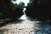 Старая дорога рядом с Акрополем