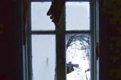 19 окно в сад