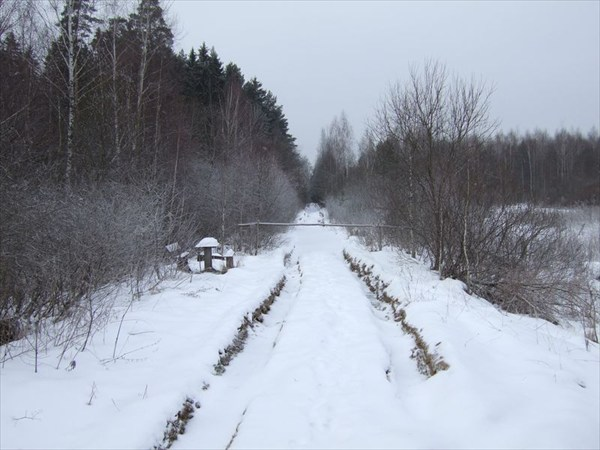 на фото: 01 дорога уходит вглубь Полесья