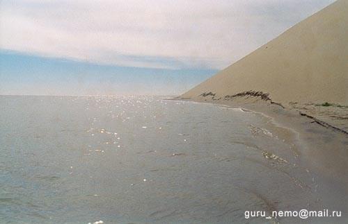 Дюны Куршской косы.