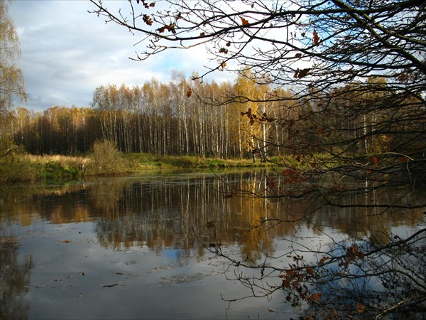 Озеро за забором