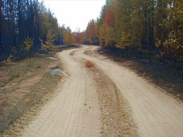 Дорога на Волому.