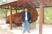 Кипр, в горах, 2007