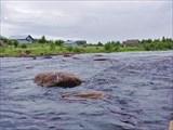 Река Поньгома, шивера