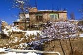 Армения4