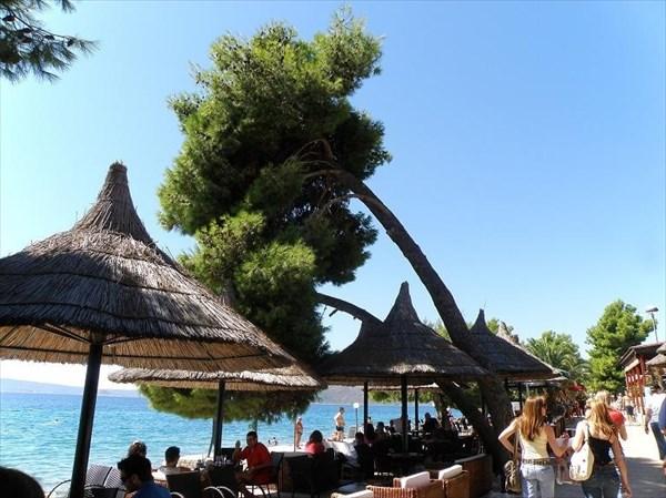 015-Медена-пляж-зонтики