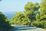 Все съезды к пляжам в Porto Carras перекопаны