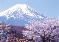Япония-Япония