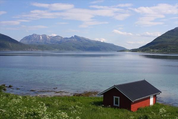 на фото: Tovik