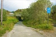 Туннель на велодорожке. Vagan