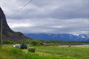 Сельскохозяйственность на острове Hadseloya