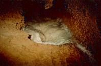 Кристаллические ежи в пещере Физтеховской