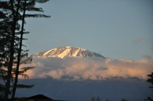 Г. Килиманджаро