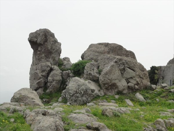 Каменный верблюд.