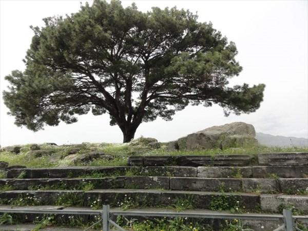 Фундамент алтаря Зевса. Сам алтарь вывезли немецкие археологи.