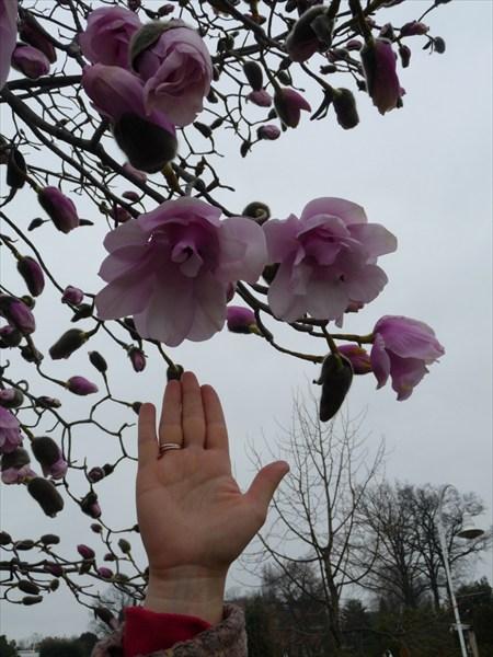 Лозанна в марте