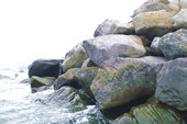 Камни Атлантики