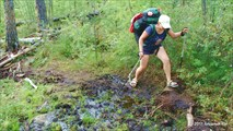Кисель обходиться по кромочке болота