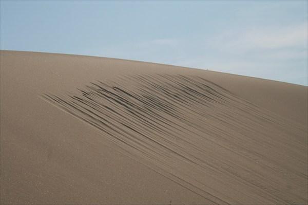 Пустыня в движении 2