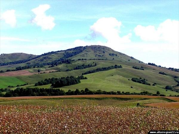 Гора Елтош - главная достопримечательность Касногоского района