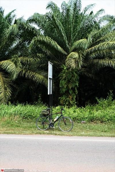 Велосипедом через Малайзию6