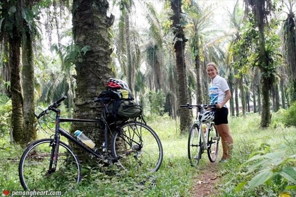 Велосипедом через Малайзию8