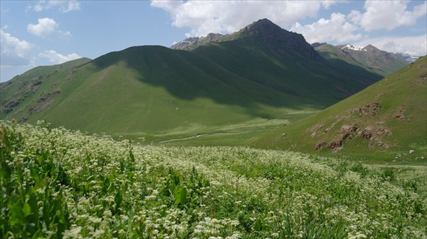 Горы Сарыкамыш
