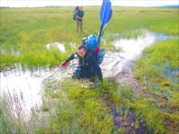 Коварные тундровые болота. Хоп - и по пояс!