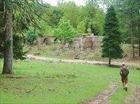 Развалины дворца князей Дадиани