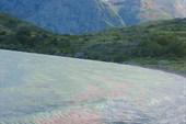 Торрес дель Пайн