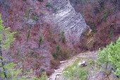 Плесецкое ущелье